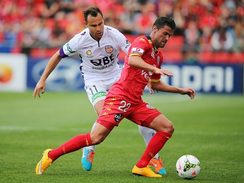 Prediksi Bola Jitu Perth Glory vs Adelaide United 23 Januari 2019