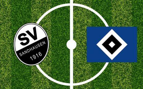 Prediksi Bola Jitu Hamburg vs Sandhausen 31 Januari 2019